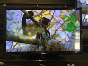 """Sanyo 24"""" LCD-LED 720P DP24E14 TV"""